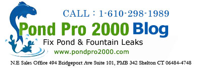 PondPro2000 - Fix Fish Ponds and Fountains Leaks