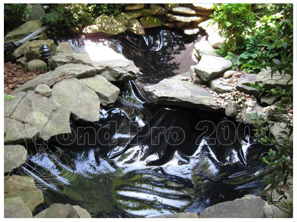 Pond Repair