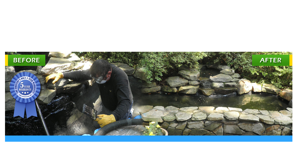 Pond pro concrete for fish pond repair pond pro 2000 for Fish pond repair